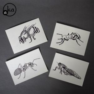 carte insecte